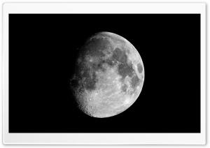 Moon In The Dark