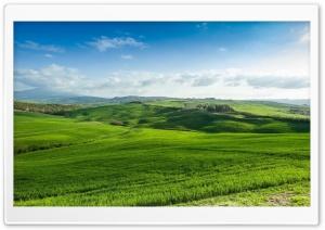 Beautiful Green Lands