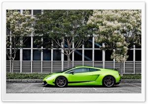 Green Lamborghini Gallardo...