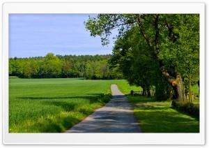 Summer Landscape Nature 13