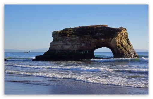 Download Natural Bridges State Beach, Santa Cruz UltraHD Wallpaper