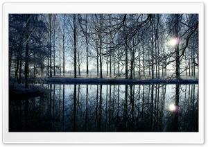 Reflection In Kromme Rijn River