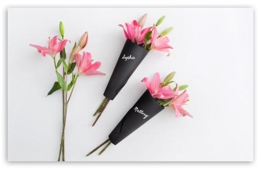 Download Pink Lilies Flowers UltraHD Wallpaper
