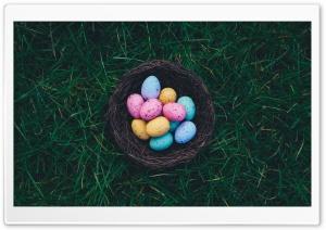 Chocolate Easter Eggs Nest