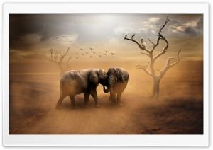 Two Elephants, Wild Animals,...
