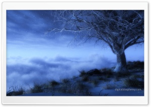 At Worlds Edge Winter