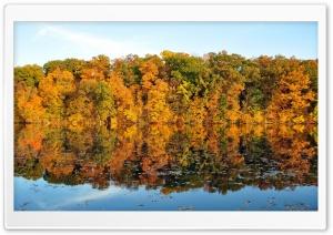 Autumn Reflexion