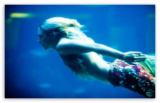 Download I Think I Just Saw A Mermaid UltraHD Wallpaper