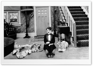 Charlie Chaplin Funny