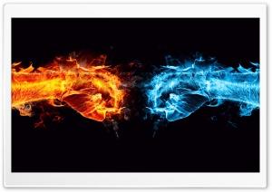 Fire Fist vs Water Fist