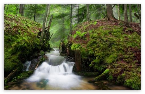 Download Coldwater Creek UltraHD Wallpaper