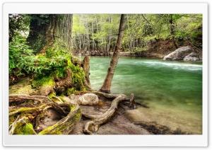 River Shore HDR