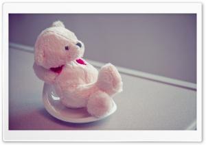 Furry Teddy