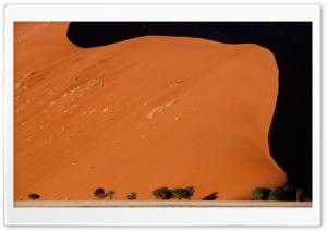 Desert Dunes, Sesriem,...