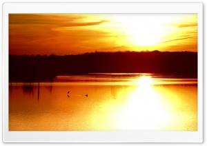Gold Sunset Sky 10