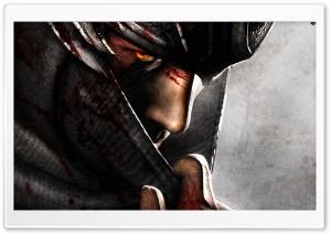 Ninja Gaiden 3 (Video Game 2012)