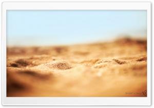 Desert Sand Macro