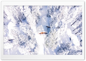 Drone Photography Winter Snow...