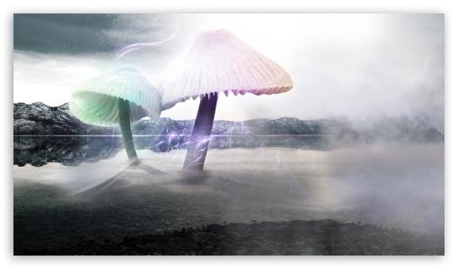 Download Fischfanger - Giant Mushrooms UltraHD Wallpaper