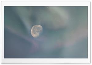 Enchanted Moon