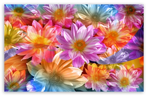 Download Fantasy Flowers UltraHD Wallpaper