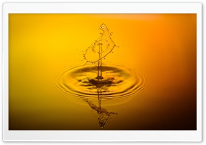Yellow Water Droplet