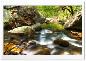 Forest Creek HDR