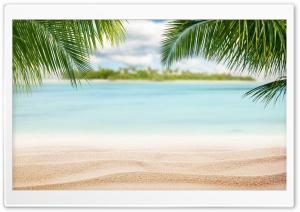 Beach, Nature
