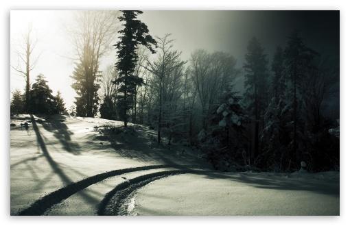 Download Car Tracks On The Snow UltraHD Wallpaper