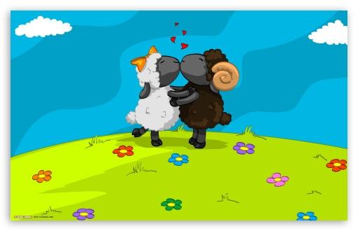 Download Sheeps In Love UltraHD Wallpaper