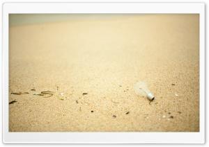 Light Bulb On Sand