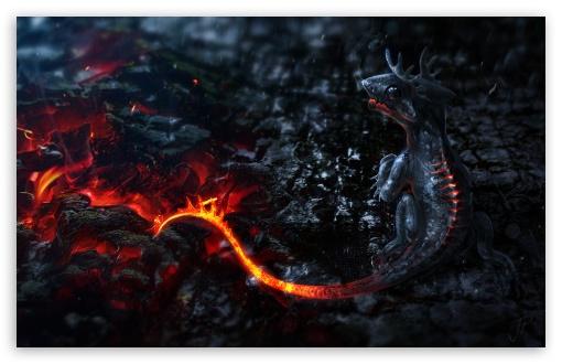 Download Salamander Artwork UltraHD Wallpaper