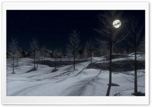 Winter Midnight 3D