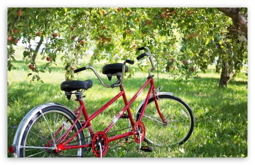 Download Tandem Bike UltraHD Wallpaper