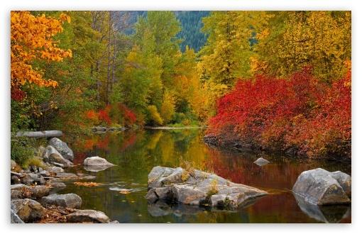 Download Nason Creek Stevens Pass Washington UltraHD Wallpaper