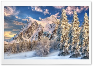 Mountain Behind Forest Snow...