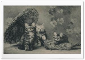 Cute Kittens Vintage