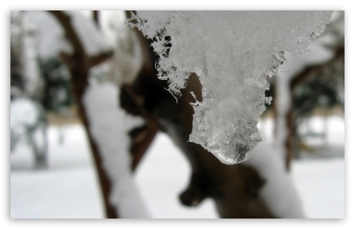 Download Snow Ice UltraHD Wallpaper