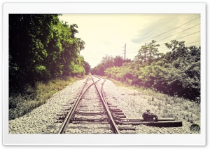 Summer Rail Road