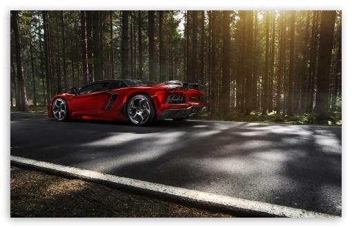 Download Lamborghini Aventador Mansory Forest UltraHD Wallpaper
