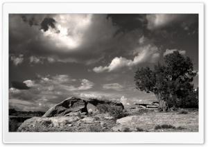 Juniper Sandstone Sky