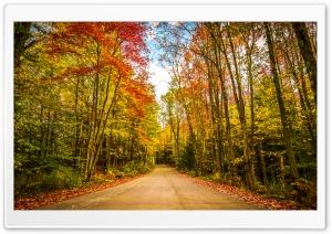 Fall, Autumn, Colors, Travel,...