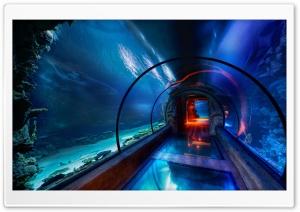 Underwater Passage, Las Vegas