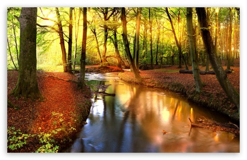 Download Impressive Autumn Landscape UltraHD Wallpaper