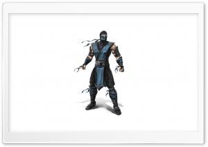 Mortal Kombat 2011 - Sub Zero