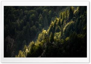 Mountain Landscape, Nature