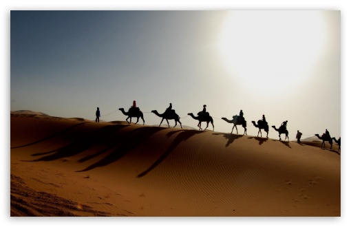 Download Desert Caravan UltraHD Wallpaper
