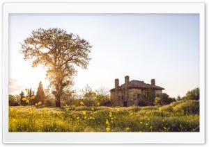 Landscape Tree House Telasm