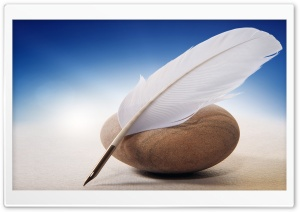 White Quill