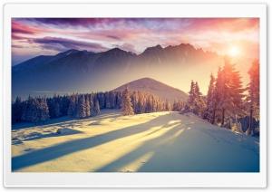 Sunset Winter Shadows